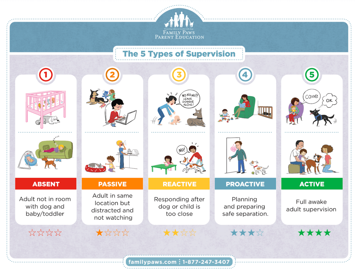 Diagram of 5 Types of Supervision for Pets and Babies.